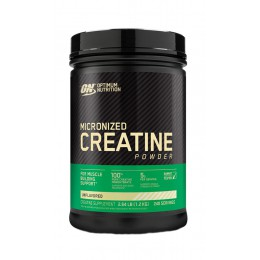 ON. Micronized creatine powder - 1200 г