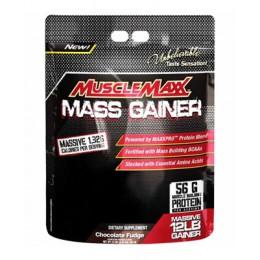 Allmax. MuscleMaxx Gainer - 5440 г