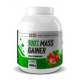 HSN. Mass Gainer - 3000 г