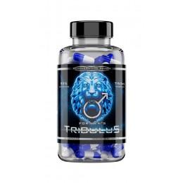 Reg Pharm. Tribulus 90% - 90 капс